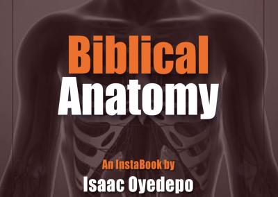 Biblical Anatomy